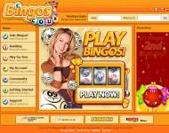 Review Of Bingos